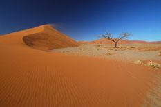 Einzigartige Farben in der Namib