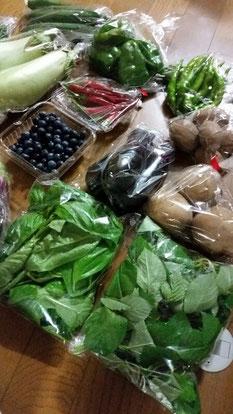デザイナーでもある飯塚農園さんのお野菜宅配です。今回は「ブルーベリー」も入ってました(^。^)