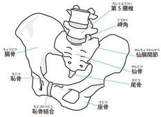 頭や腕足から生理痛・生理不順を変える整体