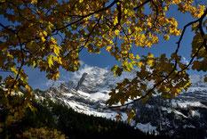 Die Lamsenspitze und Goldenen Blätterdach