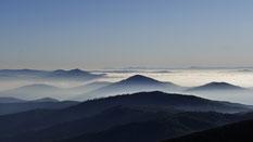 Morgenstimmung um den Mount Bogong