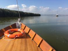 Albufera Bootsfahrt See Naturpark fahren
