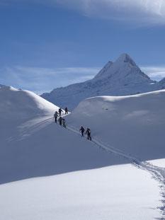 Aufstieg zu den Spitzen - Schreckhorn im Hintergrund