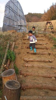 なかはた農園 イチゴ狩り 階段