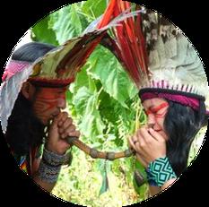 Mapu & Bismani Huni Kuin, Rapé Zeremonie