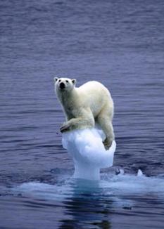 多くの生命を奪う気候変動は絶対に止めないといけない。therapysessions / CC BY 2.0