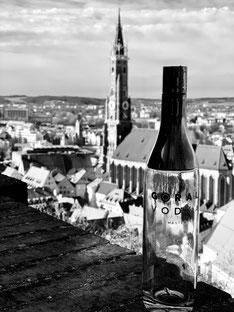 Gora Vodka in Landshut