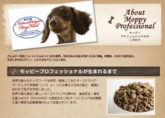 moppypro,モッピープロ,ちわわ,チワワ,わんこ,ワンコ,犬,子犬