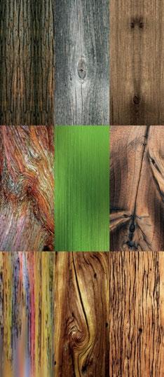 Abbildung von neun verschiedenen natürlichen Dekoren