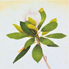 Magnolia-2   35x35cm