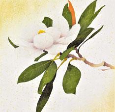Magnolia-3  35x35cm