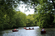 Menschen fahren mit dem Boot auf einem See im Tiergarten Berlin. Foto: Helga Karl