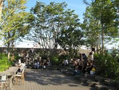 東京神宮前交差点ビル屋上庭園