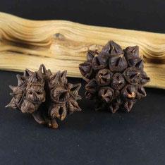 filles de l'air création spidergum cone