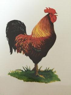 雄鶏が鳴いている絵です。何かって…。