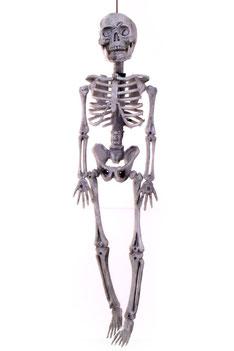 Hangdecoratie skelet hangend 40x11 cm € 5,95