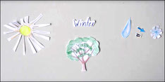Der Baum und seine Blätter