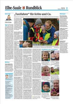 Die Seite der Volksstimme Lokalredaktion Schönebeck vom 20. März 2017 mit unserem NABU-Krötentaxi (Heike Liensdorf)