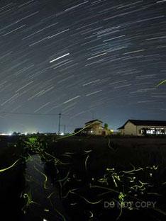 ホタルの光と木星とさそり座の光跡 北添伸夫