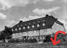 Als Schüler fiel ich über diese Mauer der Jugendherberge Burg a.d.W.; seit dem heisst es, er sei NICHT auf den Kopf gefallen.