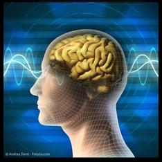 Mundmetalle verstärken die Elektrosmog-Belastung des Gehirns (© Andrea Danti - Fotolia.com)