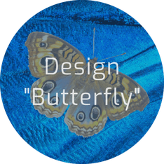 """Layout """"Butterfly"""""""
