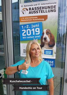 Hundesalon in Erfurt - Rassehundeausstellung in Erfurt