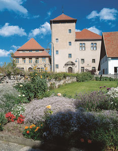 Burg und Burgmuseum in Horn © Lippe Tourismus & Marketing GmbH