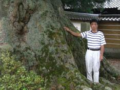 樹齢300年の神木から採気