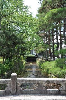 Blick in den Garten des Daikaku-ji Tempel