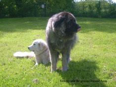 Greeny und Aron 2009