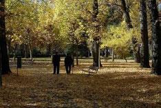 En Andalucía, entre 1.500 y 2.000 abuelos están separados de sus nietos, tienen problemas para verlos o no pueden mantener con ellos una relación familiar normal, según ha dicho a Efe la portavoz de la Asociación Abuelos Separados de Sus Nietos, Guadalupe