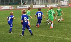 Die G-Junioren beim Spiel in Petersberg