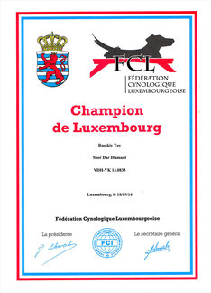 "Russkiy Toy ""Sher Dar Diamant"" - Champion de Luxembourg"