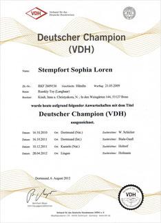 """Russischer Toy - Urkunde """"DEUTSCHER CHAMPION (VDH)""""   2012"""