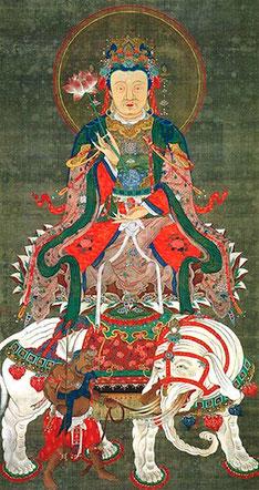 普賢菩薩像/伊藤若冲筆(相国寺蔵)