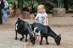 Top 5 activities for children in Berlin