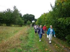 Chemin de randonnée à Créhen en Bretagne