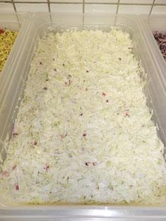 Weißkrautsalat mit roten Zwiebeln und einem Knoblauchdressing