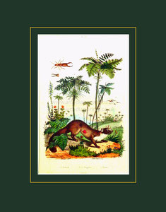 Botanical print, Guerin
