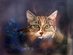Katze Pastellkreide