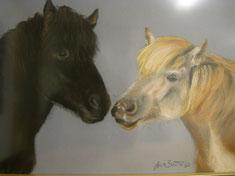 Black&White Islandpferde Pastellkreide