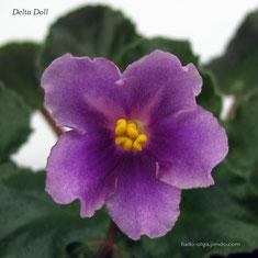 Delta Doll