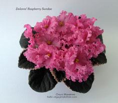 Dolores' Raspberry Sundae