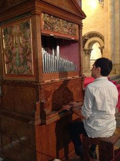 Salamanca, Catedral Vieja, Organo di Salinas