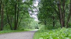 Noch 5 km bis Klaipeda