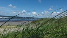Blick auf die Ostsee bei Palanga