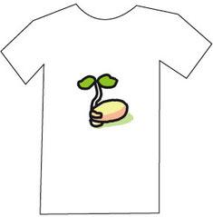 シードTシャツ.jpg