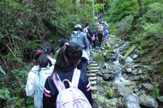 沢沿いの寺谷を歩く