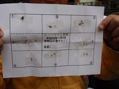ひっつき虫図鑑シート
